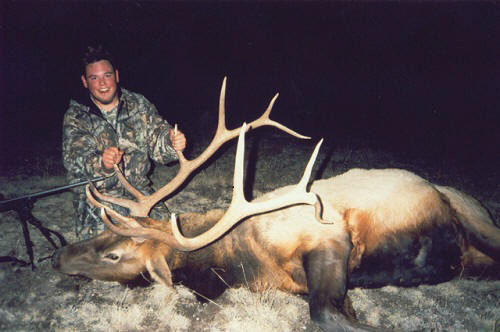 arizona bull elk hunts
