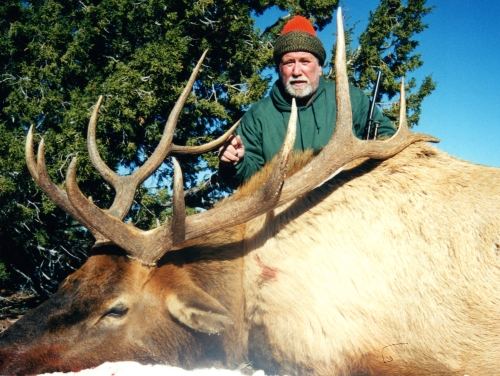 arizona elk late rifle bull guides outfitters