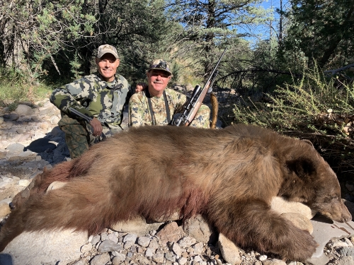 arizona bear hunting outfitters guides hunts