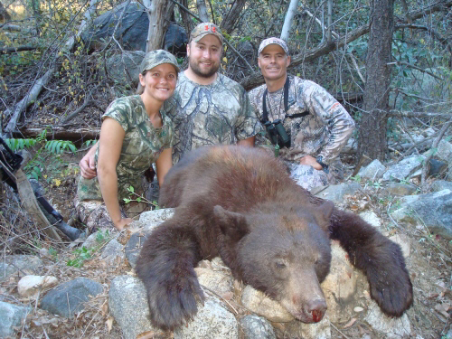 arizona bear hunt