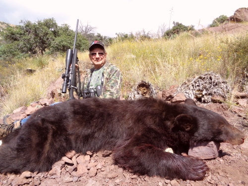 arizona bear hunting guides