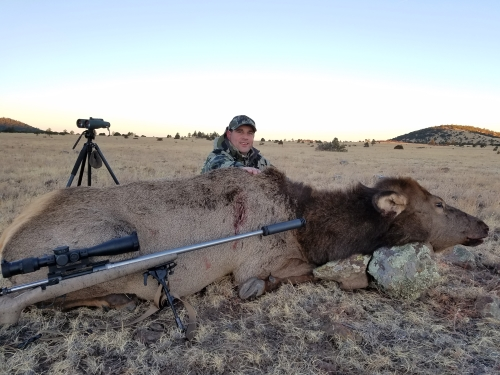 arizona cow elk hunting guide hunt