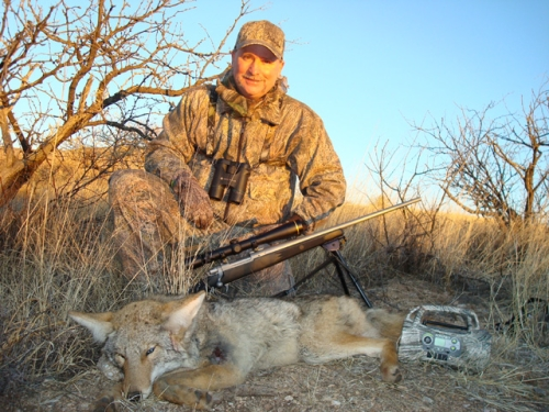 arizona coyote predator hunting