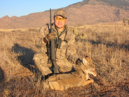 arizona coyote hunting