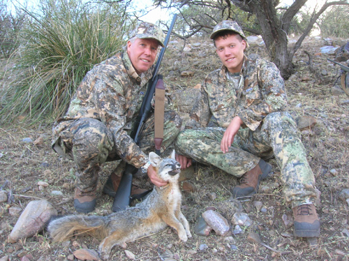 arizona gray fox hunting