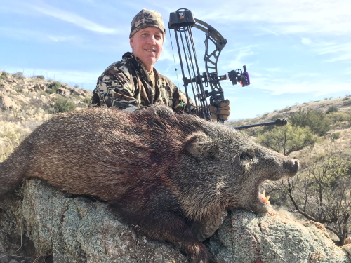 archery bow javelina hunting guides outfitters