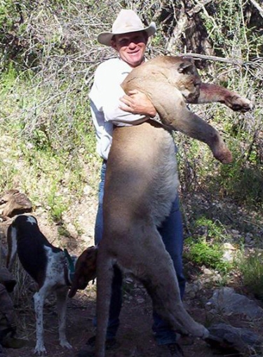 arizona mountain lion guides