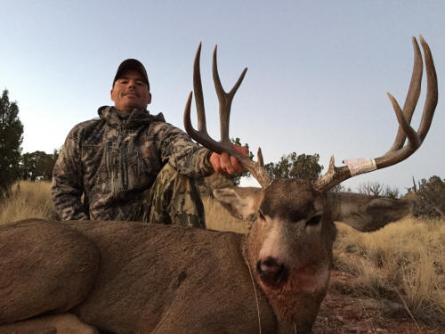 Arizona Mule Deer Hunting