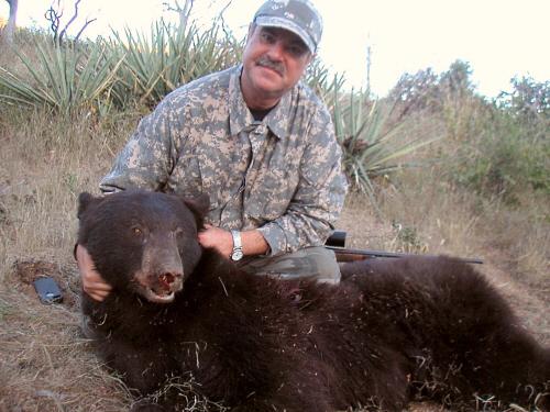 Arizona Guided Bear Hunts Trophy Black Bear Hunting