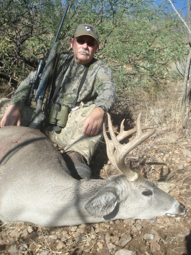 arizona guided hunts coues deer