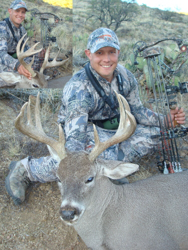 arizona archery coues deer